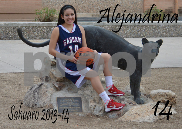 2014 Sahuaro Girls Hoops Team Photos